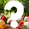 ケトジェニックダイエット中のメニューを増やすのに最適な食材6選